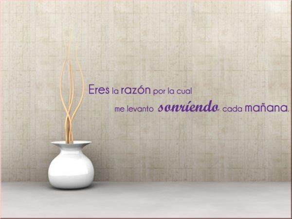 eres la raz n wandtattoo auf spanisch. Black Bedroom Furniture Sets. Home Design Ideas