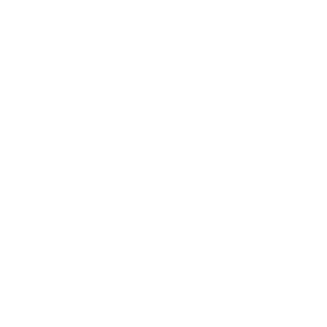 Blumenmuster Schwarz Weiß Wand - Rafinovier