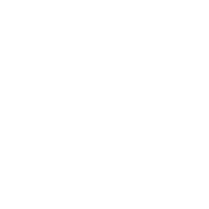 Wandtattoo Ying Yang Transparent