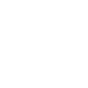 Aces High! - Wandtattoo Transparent