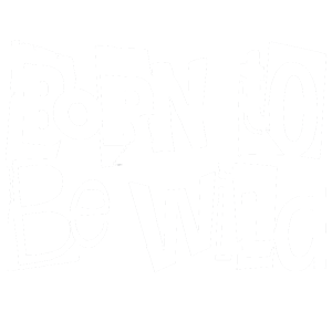 Born to be wild - Wandaufkleber Transparent