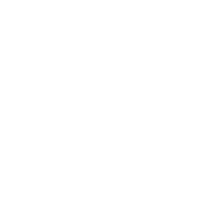 Wandtattoo Skateboarderin Transparent